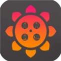 向日葵视频app最新版下载安装