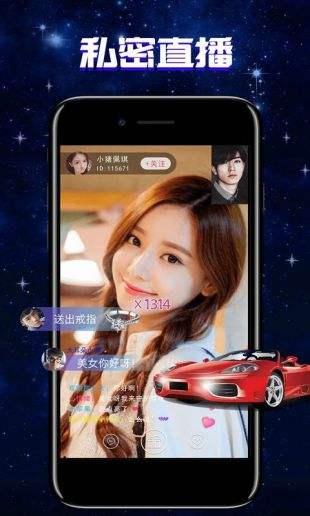 猫咪app