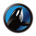 鲸鱼贷app下载