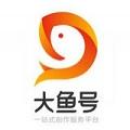 大鱼号app下载安卓