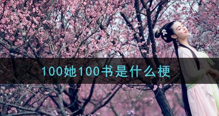 100她100书梗是什么意思